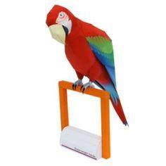 Free Essays on My Favourite Bird Parrot through